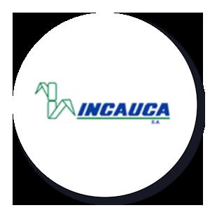 INCAUCA S.A. - R